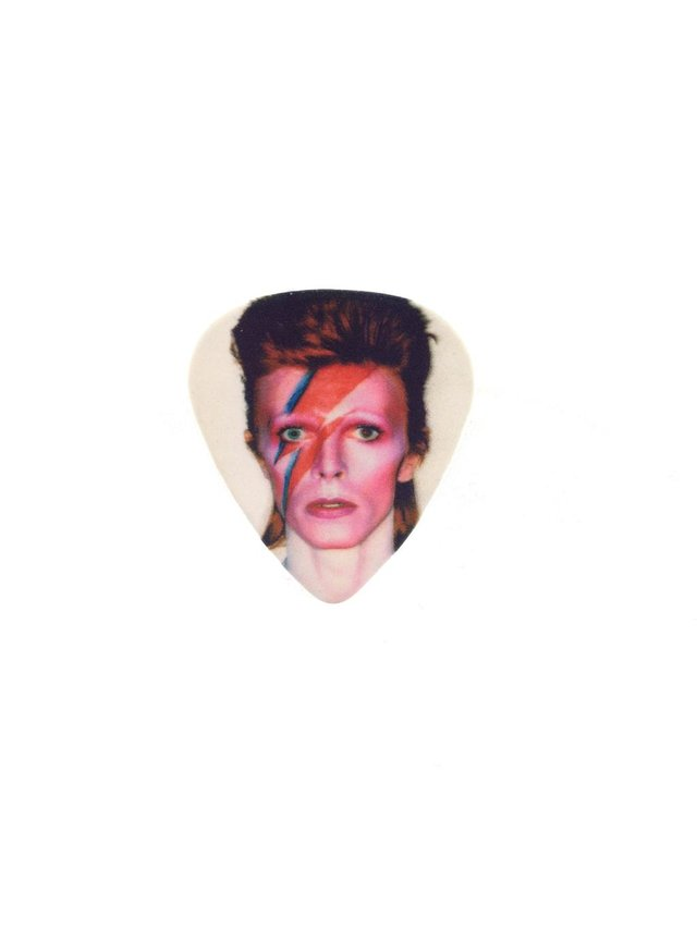MizDragonfly David Bowie Guitar Pick Ring