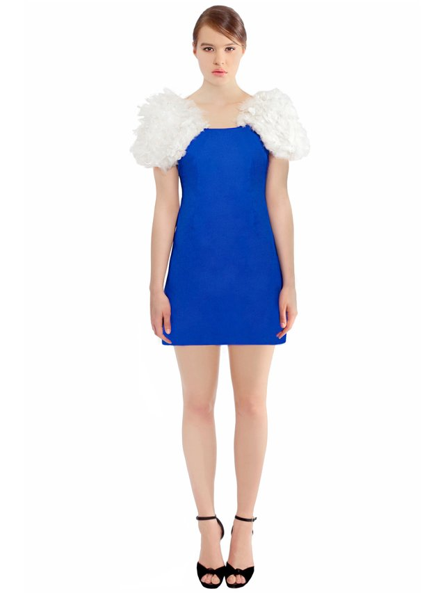 LIZA VETA Mini Dress With Feather Sleeves