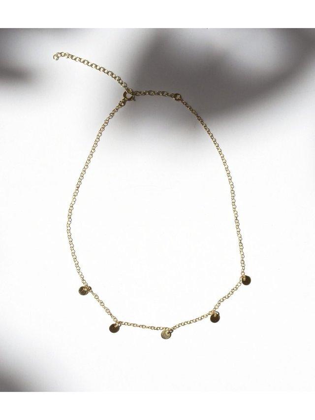 Fire & Honey Shaker Disk Necklace